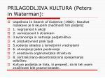 prilagodljiva kultura peters in waterman