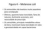 figura 4 melanose coli