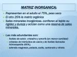 matriz inorganica