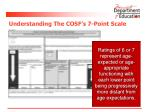 understanding the cosf s 7 point scale