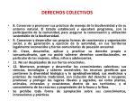 derechos colectivos1