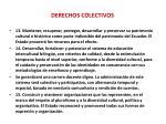 derechos colectivos2