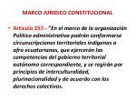 marco juridico constitucional2