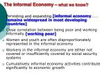 the informal economy what we know