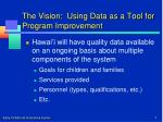 the vision using data as a tool for program improvement