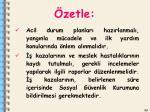 zetle2