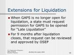 extensions for liquidation