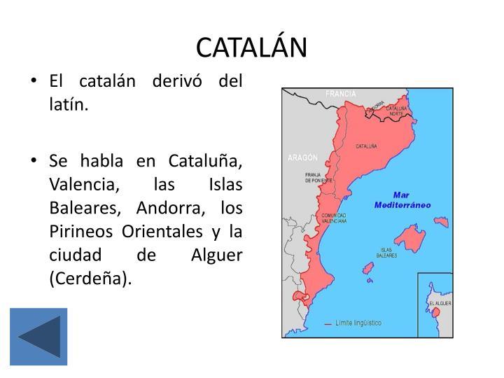 Catal n