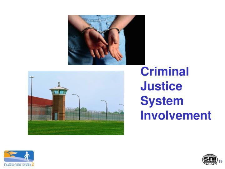 Criminal Justice System Involvement