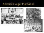 american sugar plantation