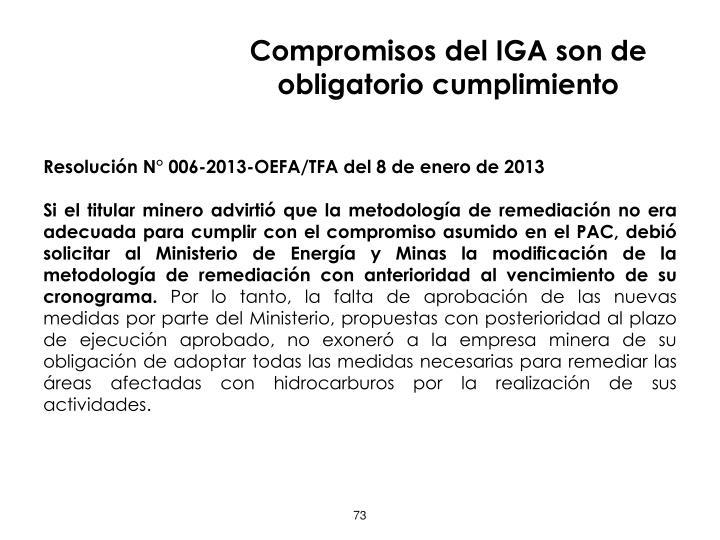Compromisos del IGA son de obligatorio cumplimiento