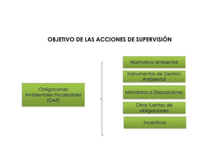 OBJETIVO DE LAS ACCIONES DE SUPERVISIÓN