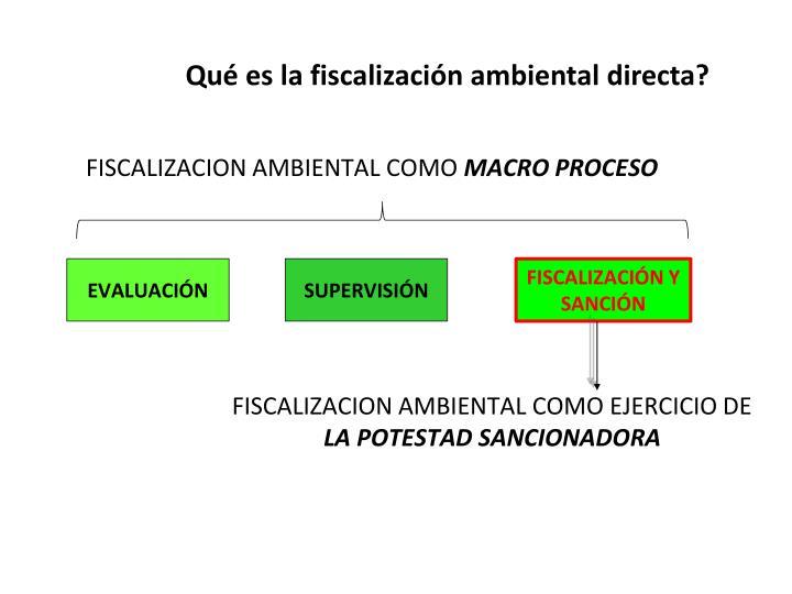 Qué es la fiscalización ambiental directa?