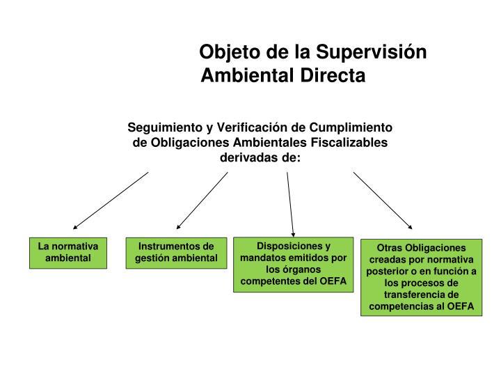 Objeto de la Supervisión               Ambiental Directa