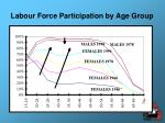 labour force participation by age group