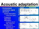 acoustic adaptation