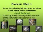 process step 1