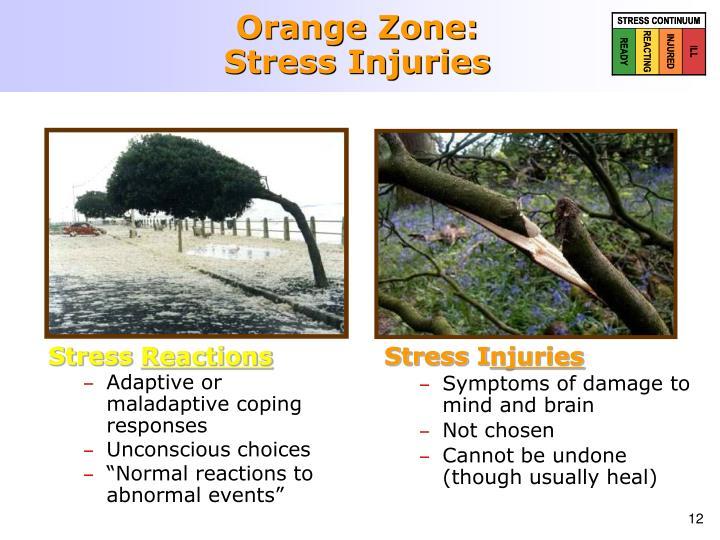 Orange Zone: