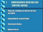 dimensiones basicas del capital social