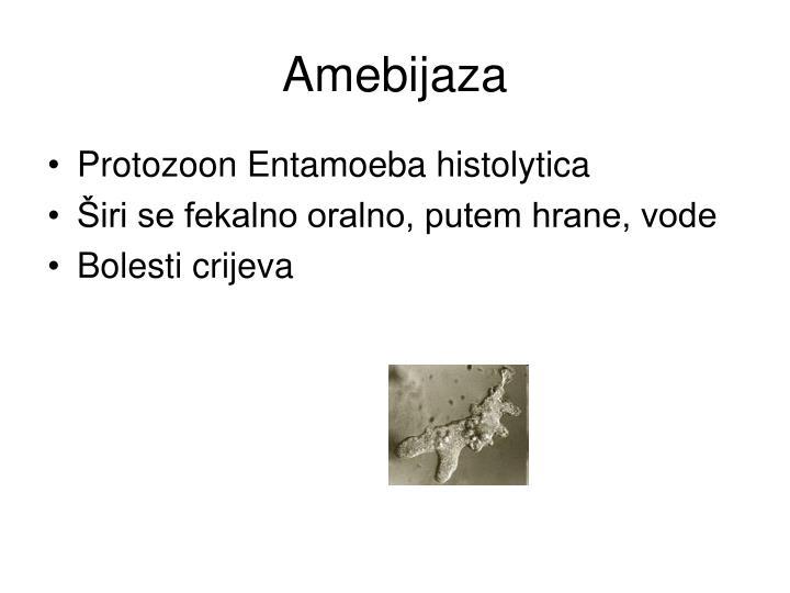 Amebijaza