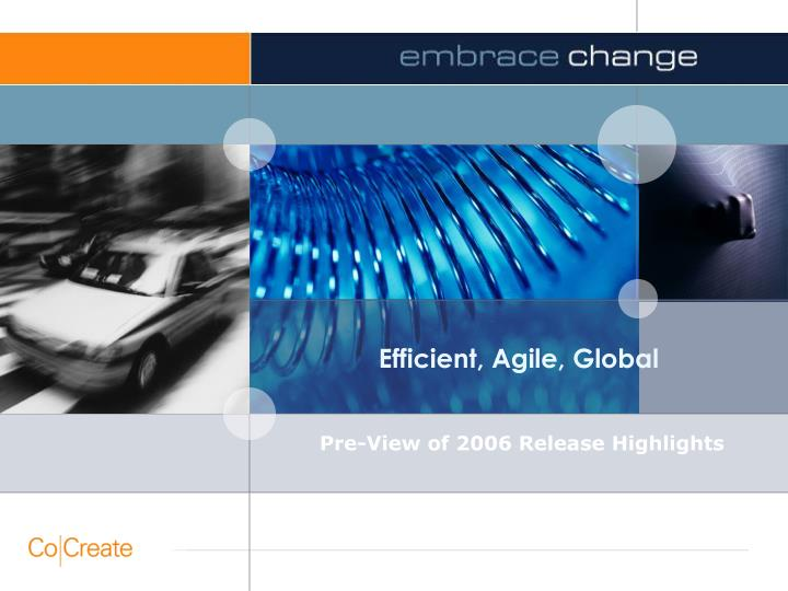 efficient agile global n.