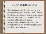 burn indicators
