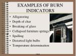 examples of burn indicators