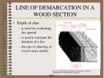 line of demarcation in a wood section