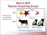 matriz bcg boston consulting group