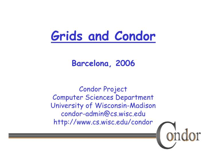 grids and condor barcelona 2006 n.