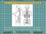 curvaturas fisiol gicas de la c v