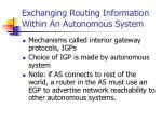 exchanging routing information within an autonomous system
