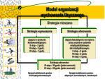 model organizacji wychowania fizycznego
