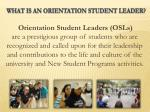 what is an orientation student leader