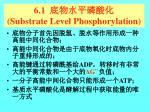 6 1 substrate level phosphorylation