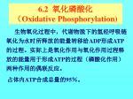 6 2 oxidative phosphorylation
