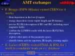 amt exchanges