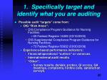 1 specifically target and identify what you are auditing