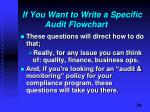if you want to write a specific audit flowchart