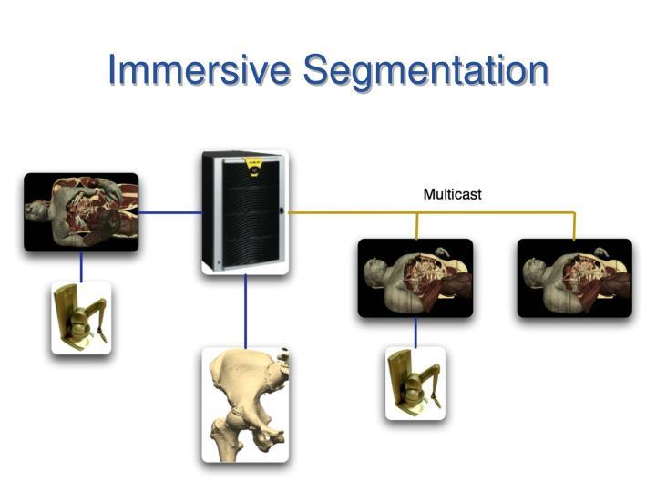 Immersive segmentation