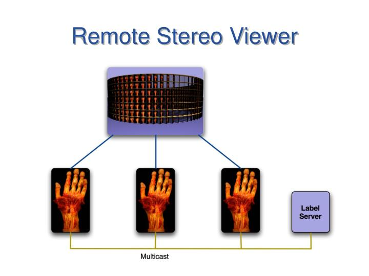 Remote Stereo Viewer