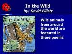 in the wild by david elliott