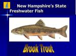 new hampshire s state freshwater fish