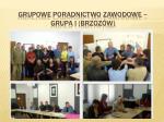 grupowe poradnictwo zawodowe grupa i brzoz w