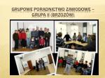grupowe poradnictwo zawodowe grupa ii brzoz w