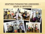 grupowe poradnictwo zawodowe grupa iii brzoz w