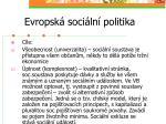 evropsk soci ln politika5