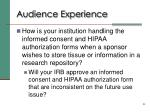 audience experience