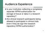 audience experience1