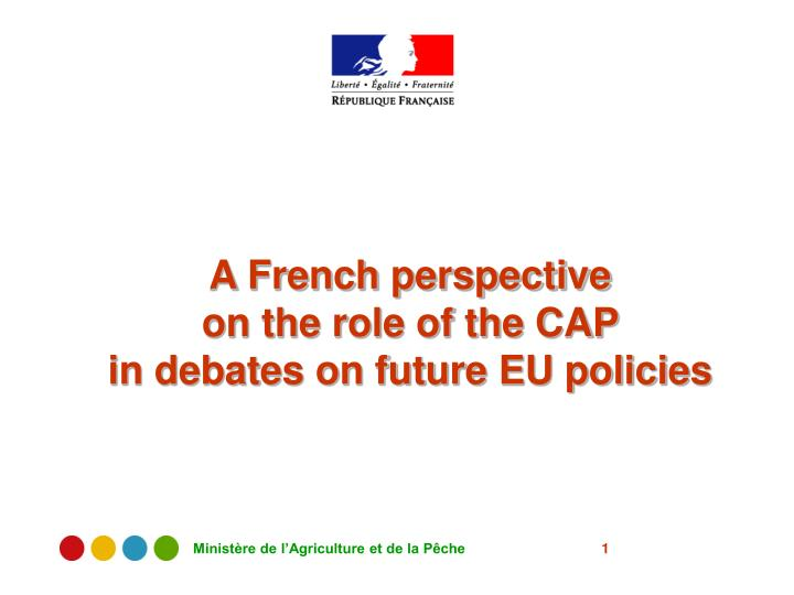 a french perspective on the role of the cap in debates on future eu policies n.